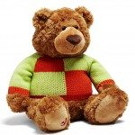 Child Mind Institute-outfitted Little Brown Bear